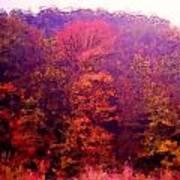 Big Hill Autumn Poster