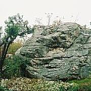 Big Rock Poster