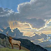 Big Sky-bull Elk Poster