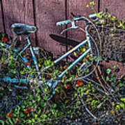 Bike In The Vines Poster