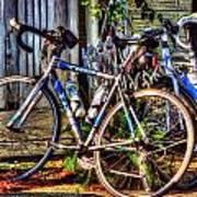 Bike Trek Poster