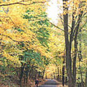 Biking In Bucks County Poster