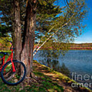 Biking To Horseshoe Lake Poster