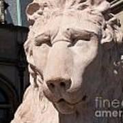 Biltmore Lion Poster