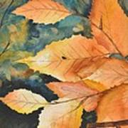 Birch Leaves Poster