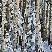 Birches In The Winter Poster