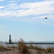 Bird And Lighthouse Poster