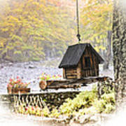 Bird House In Autumn Poster