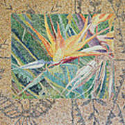 Bird Of Paradise With Tapa Cloth Poster