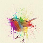 Bird Study Poster