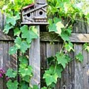 Birdhouse Sitting On A Fence Poster