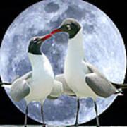 Birds Do It... Poster