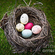 Bird's Nest With Easter Eggs Poster
