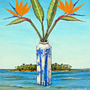 Birds Of Paradise Over Fiji Poster