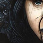 Birds Of Prey- Raven Poster
