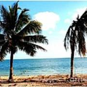 Biscayne Bay Florida Poster