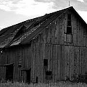 Black And White Barn Poster