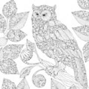 Black And White Owl Poster