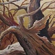 Black Cap Chickadee Poster