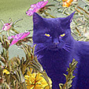 Black Cat Lurking In The Portulaca Poster