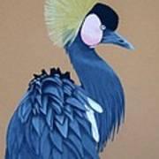 Black-crowned Crane Poster