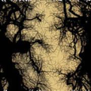 Black Forest Poster by John Monteath