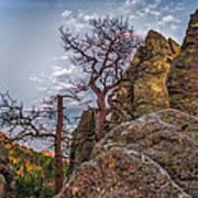 Black Hills Boulders Poster