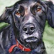 Black Lab In Watercolor Poster