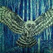 Black Owl On Blue Night Poster