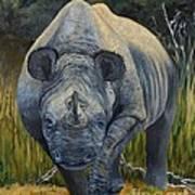Black Rhino Poster