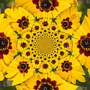 Blackeyed Susan Kaleidoscope Poster