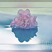Blend Of Pastels Poster by Kaye Menner