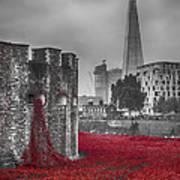 Blood Swept Lands 3 Poster