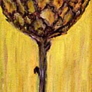 Blooming Artichoke - Cynara Cardunculus Poster