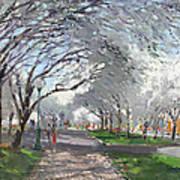 Blooming In Niagara Park Poster