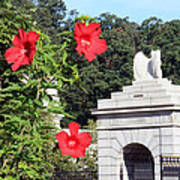 Blooms In Arlington Poster