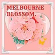 Blossom In Melbourne Poster