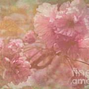 Blossoms Splender Poster