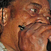 Blowin His Blues Harp Poster