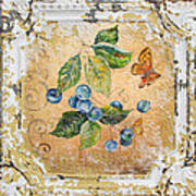 Blue Berries And Butterfly On Vintage Tin Poster