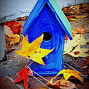 Blue Bird House Poster