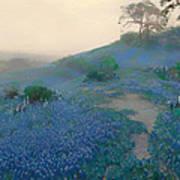 Blue Bonnet Field In San Antonio Poster