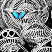 Blue Butterfly Charleston Poster