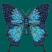Blue Butterfly Green Background Poster