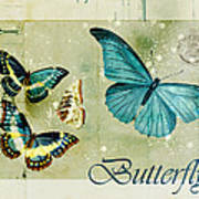 Blue Butterfly - S55c01 Poster by Variance Collections