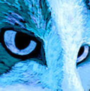Blue Cat Face Poster by Ann Powell