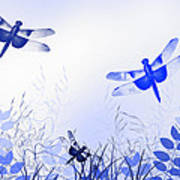 Blue Dragonfly Art Poster