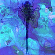 Blue Dragonfly By Sharon Cummings Poster by Sharon Cummings