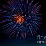 Blue Firework Flower Poster