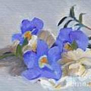 Blue Flower Still Life Poster